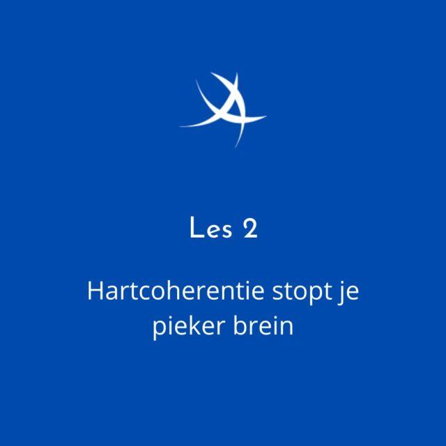 https://ademvrouw.nl/wp-content/uploads/2021/07/les-2stopt-je-piekerbrein-640x640.jpeg