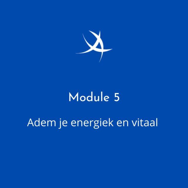 https://ademvrouw.nl/wp-content/uploads/2021/07/module5-adem-je-energiek-en-vitaal-640x640.jpeg